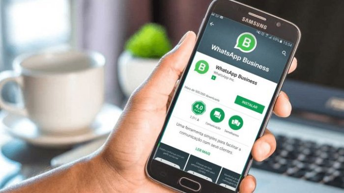 New to WhatsApp Business? Some Points You Need to Know - FlockSend