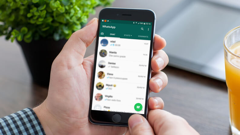 WhatsApp Business: Features for Businesses – FlockSend